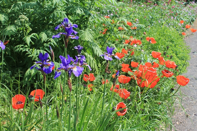 The Garden Is Recognised As A Land Project By The Permaculture Association,  Which Means That We Are Part Of A Network Of Community Gardens That Shared  ...