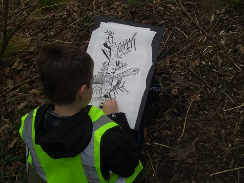 forest school drawing small