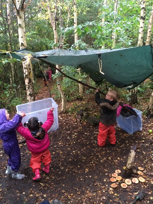 forest school problem solving small