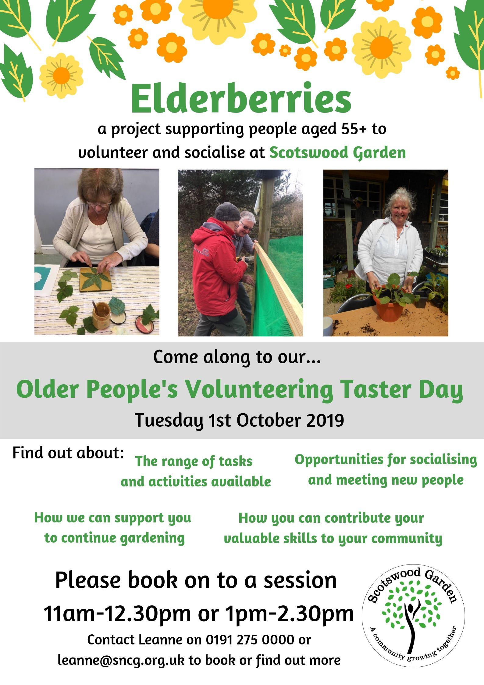 Elderberries_volunteering_taster_day.jpg