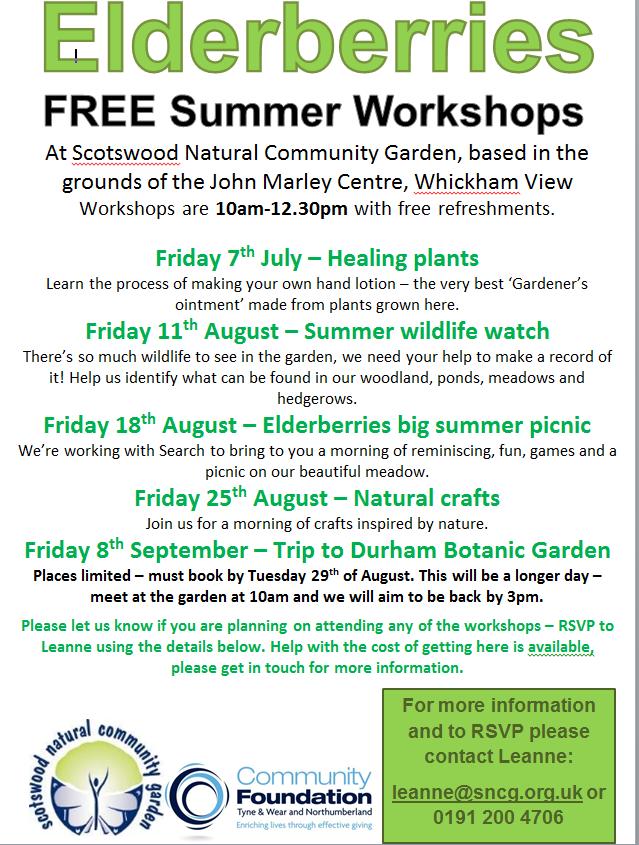 photo of summer workshops