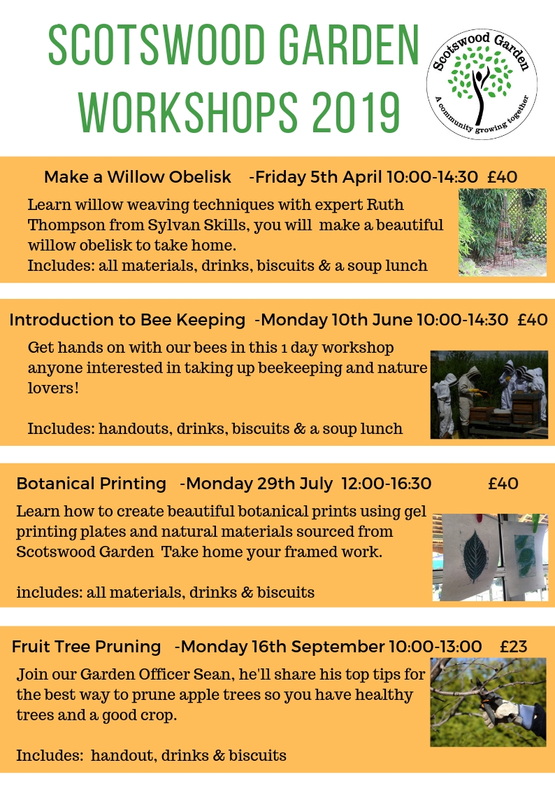 workshops pg 2
