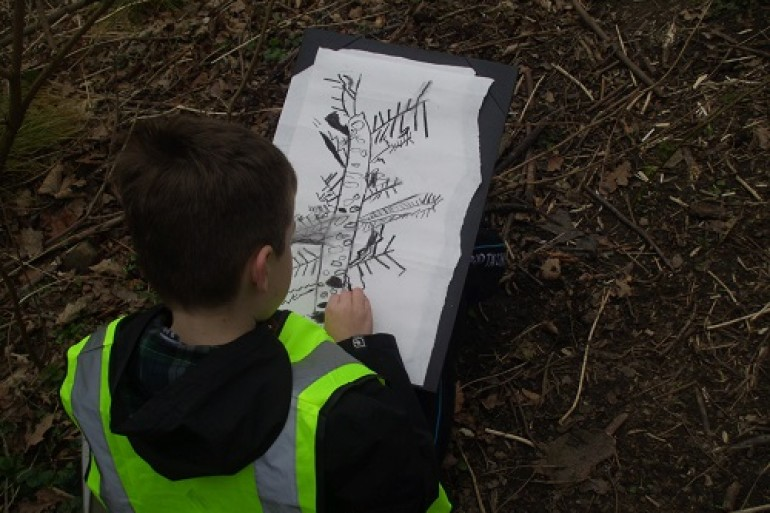forest school drawing